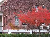 11-10 啓明大学 10-3