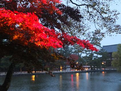 2012-11-17 奈良