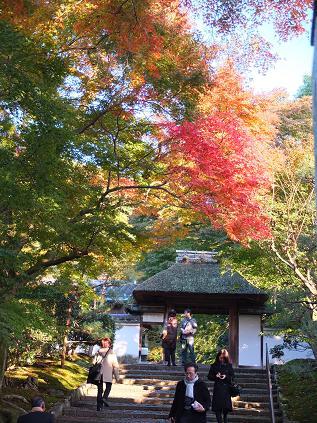 2012-11-18 安楽寺