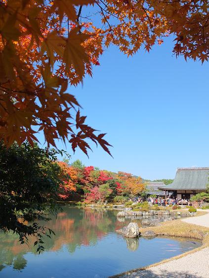 2012-11-19 天龍寺1