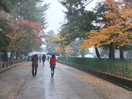 11-17 興福寺北参道4