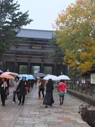 11-17 興福寺北参道2