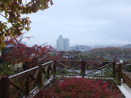 11-11 ホテルからの景色2