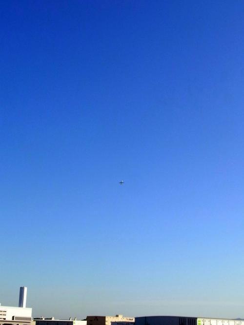 0224雁ノ巣3