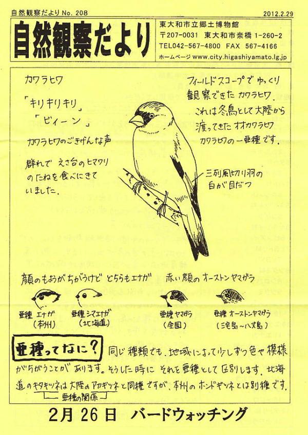 20120304a-1.jpg