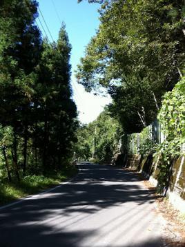 20121008CAAD10林道1