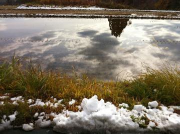 20121122CAAD10ロング雪