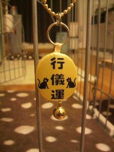 ichi-docomo-k.jpg