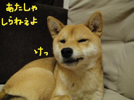 ichi47n.jpg