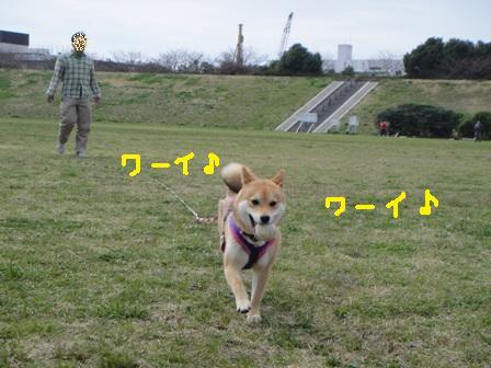 ichi50-d.jpg