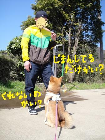 ichi50c.jpg