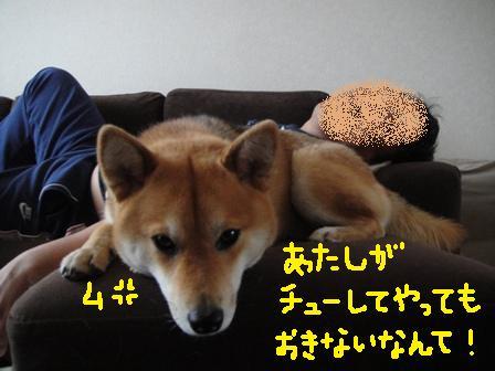 ichi61o.jpg