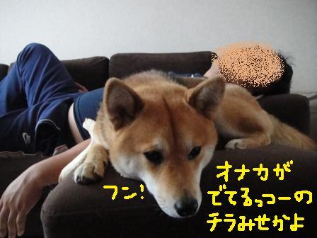ichi61p.jpg