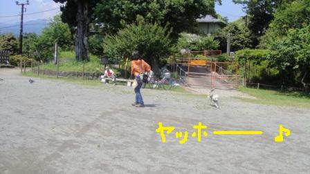 ichi64c.jpg
