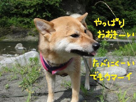 ichi74d.jpg
