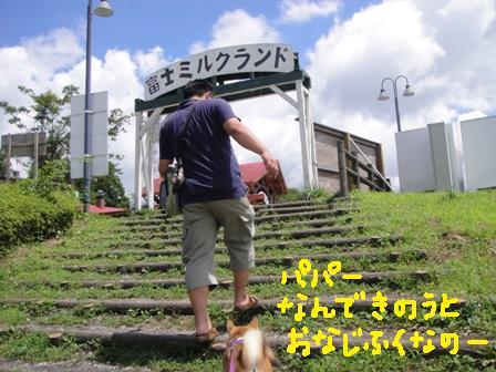 ichi76-g.jpg
