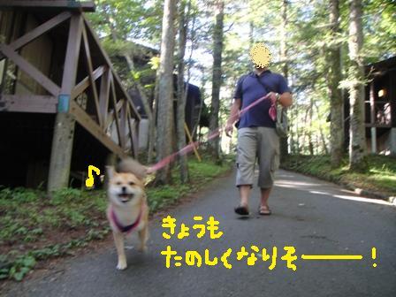 ichi76x.jpg