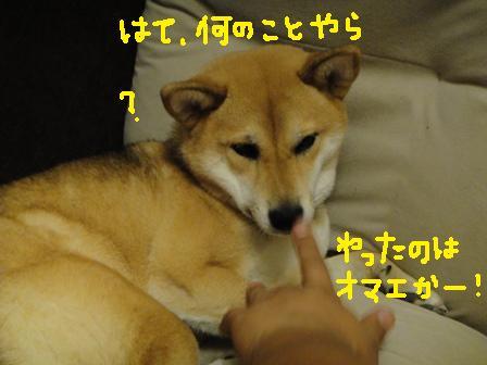 ichi79c.jpg