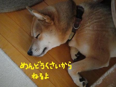 ichi79d.jpg