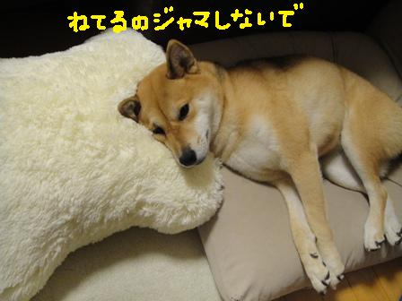 ichi82o.jpg