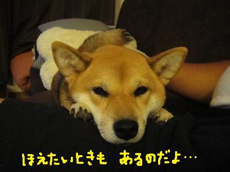 ichi82y.jpg