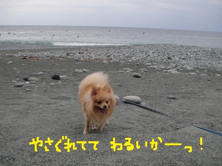 ichi84d.jpg