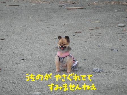 ichi84e.jpg
