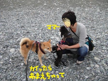 ichi84i.jpg