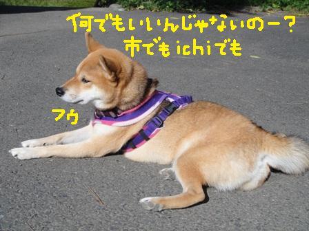 ichi86m.jpg