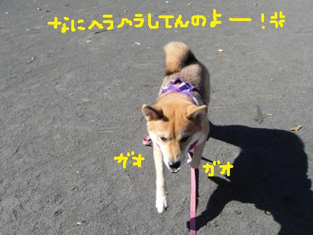 ichi86r.jpg
