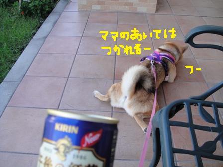 ichi86x.jpg