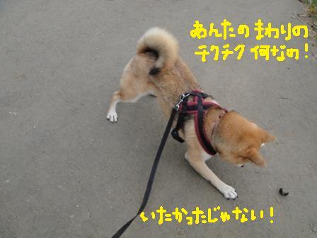 ichi92f.jpg