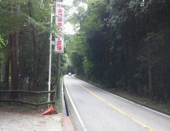 ハニー坂_convert_20111005221744