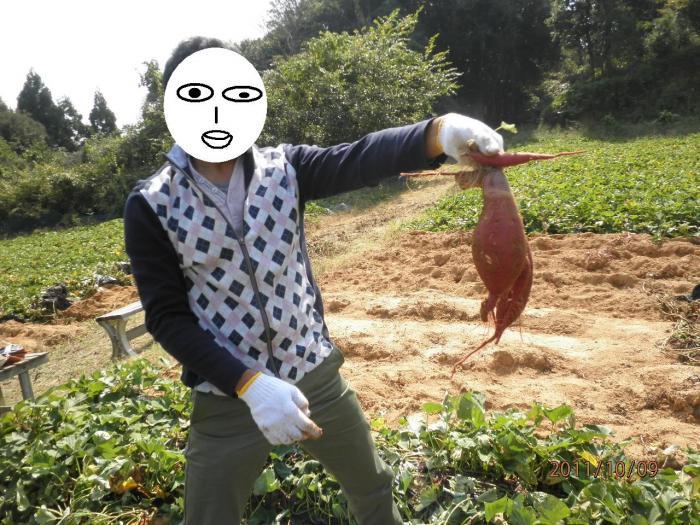 いち芋掘り_convert_20111010110207