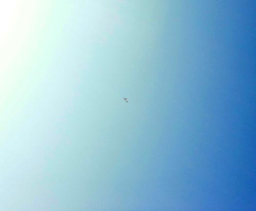 N-2362、飛行中。