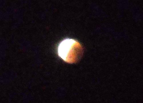 赤い月。1
