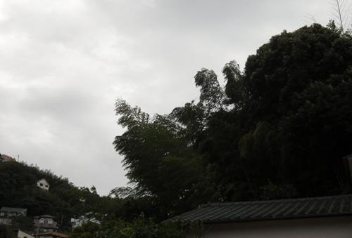 風、かなり強いです。