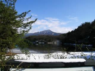 2011_1_7_3.jpg