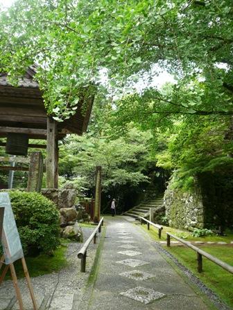植物園と併設してる珍しいお寺