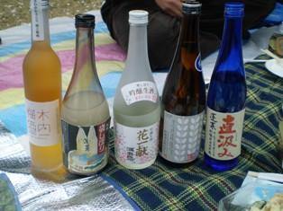 hanami sake1