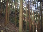 深山林道2