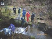 20100307山林調査6