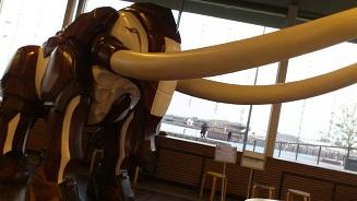 象の鼻カフェ (7)