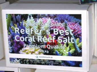 20120407_Reefer´s_Best_Coral_Reef