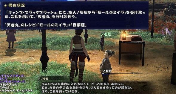 ff14ss20110127b.jpg