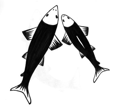 a_salmon.jpg