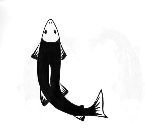 ll_salmon.jpg