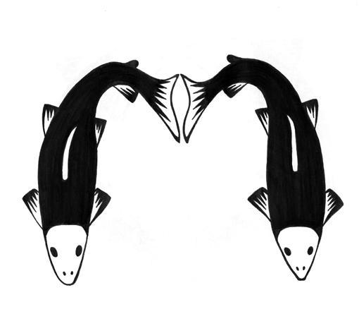 mm_salmon.jpg