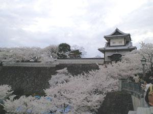 花見 石川門