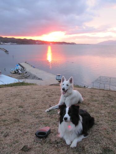 メルとビオラ 宍道湖の夕日を浴びて